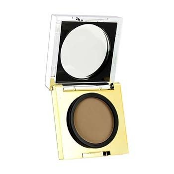 Elizabeth Arden Corretivo Flawless Finish Maximum Coverage - # Light