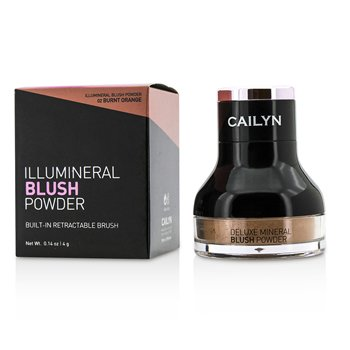 Cailyn Illumineral Blush Powder - #02 Burnt Orange