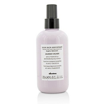 Davines Your Hair Assistant Blowdry Primer Anti-Humidity and Bodifying Tonic