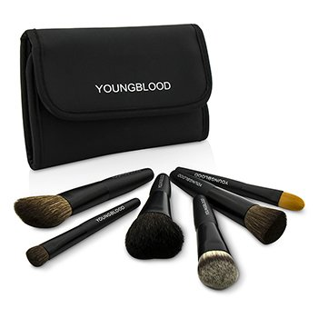 Professional Mini 6pc Brush Set